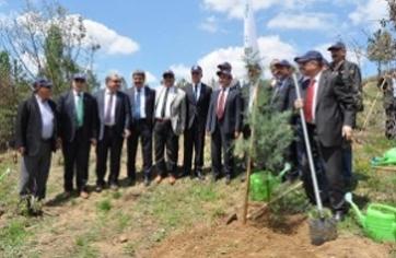 TDMMB Hatıra Ormanı Oluşturuldu